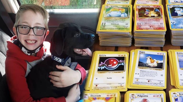 美國男孩愛犬生病 忍痛賣寶可夢卡募款 寶可夢公司感動寄來大禮